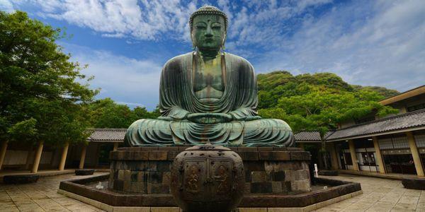 8 boeddha